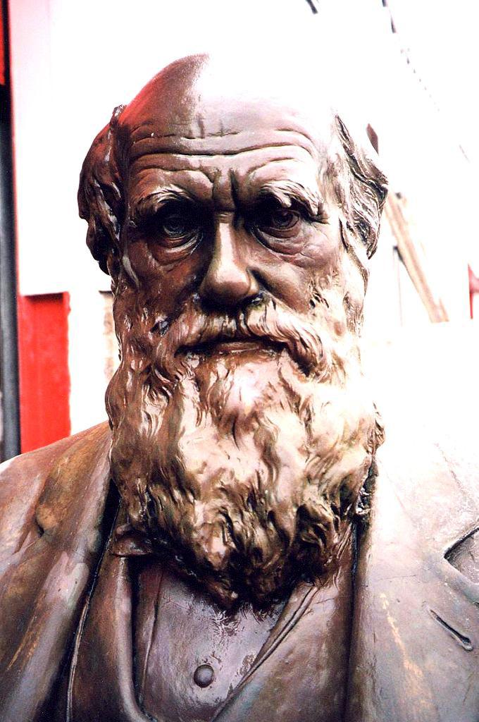 Charles Darwin Shrewsbury Sculptures Eura